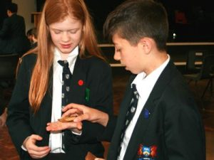 VIewing Mary Rose artefacts
